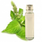 Essential Oil Peppermint 25ml