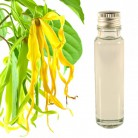 essential oil ylang ylang