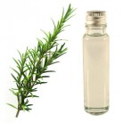 Essential Oil Rosemary 25ml
