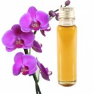 Essential Oil Orchid 20ml