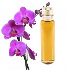 essential oil orchid